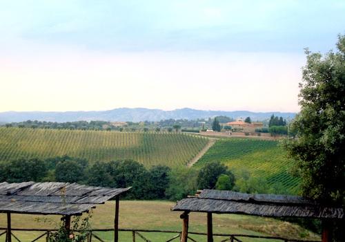 Tuscan fields, Castellare di Tonda, Italy