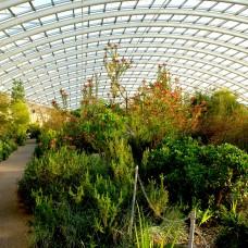 designreaction.co.uk - National Botanical Garden of Wales 03