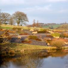 designreaction.co.uk - National Botanical Garden of Wales 15