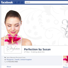 Perfection by Susan custom facebook fan page design